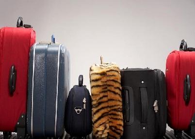 bagagem violada